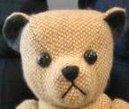 harrisons bear face