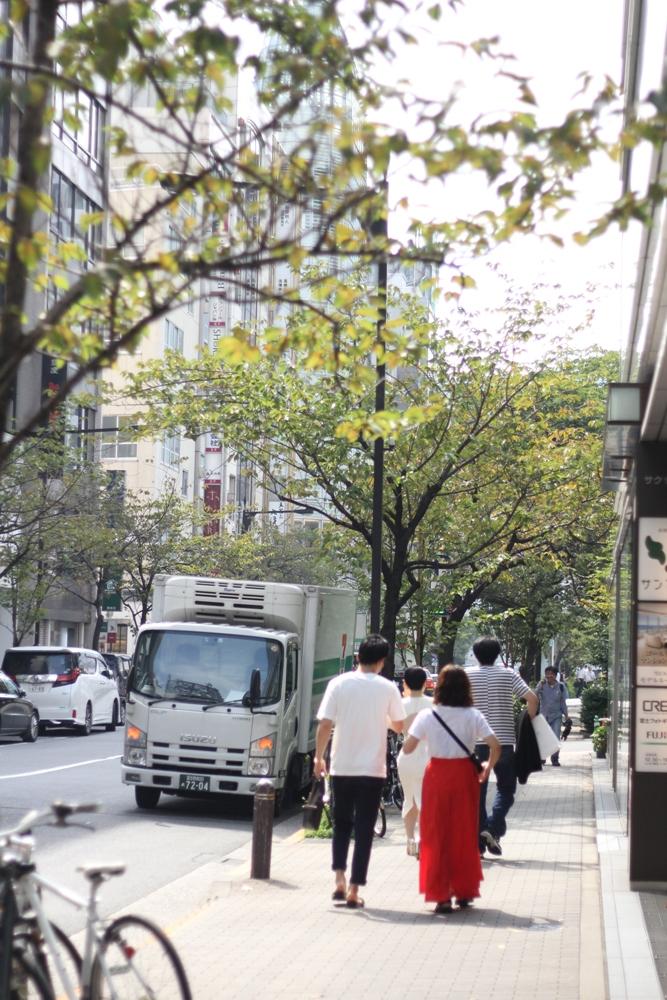 銀座一丁目桜並木